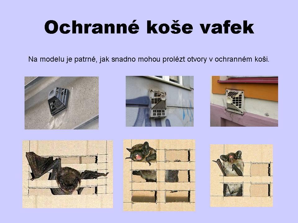 ochranne_kose