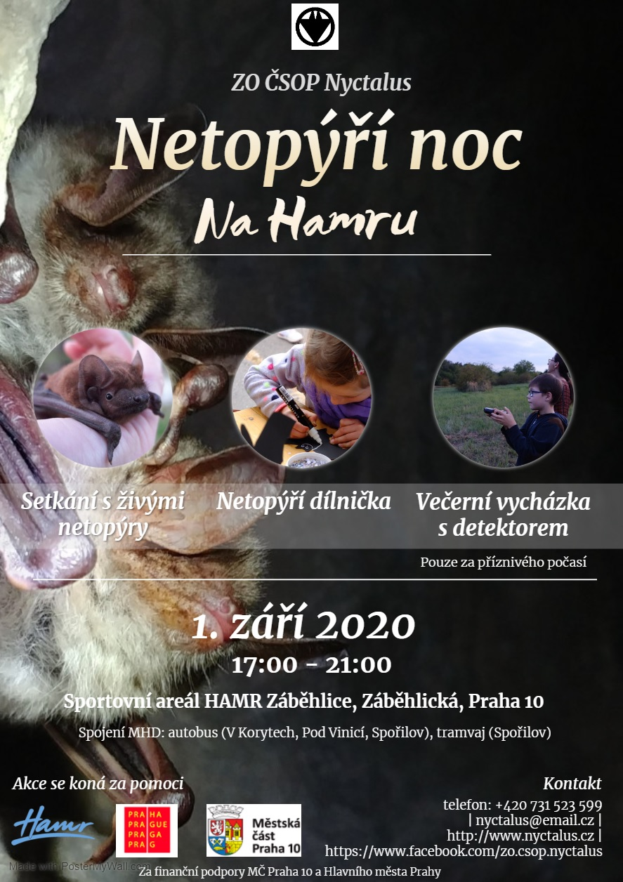 enn_hamr20